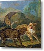 The Three Leopards Metal Print