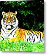 The Tiger In The Woods Metal Print