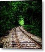The Tracks Through The Woods Metal Print