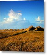 The Trail Through The Grass Metal Print