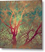 The Tree Called Beautiful Metal Print