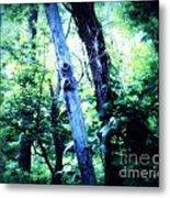The Tree Spirits Metal Print
