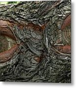 The Trees Have Eyes Metal Print