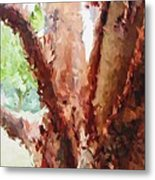 The Trees In Spring Time Metal Print