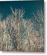 The Trees Of Teal Metal Print