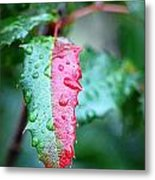 The Turning Of The Leaf Metal Print