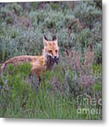 The Two-fer Metal Print