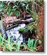 The Unknown Creek Metal Print