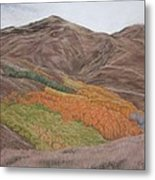 The Valley Of Color Metal Print