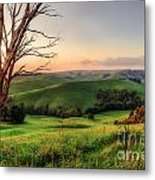 The Valley Metal Print by Ray Warren