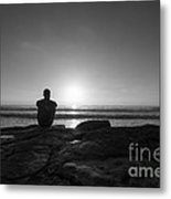 The View Bw Metal Print