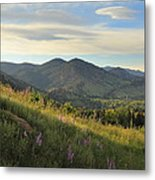 The View From Chautauqua Metal Print