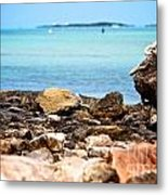 The View From Shore Metal Print