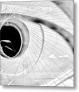 The View In The Eye Metal Print