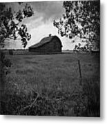 The Waiting Woods  Metal Print
