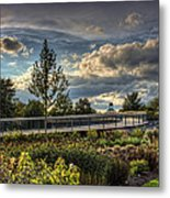 The Walking Path Metal Print