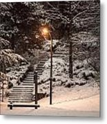 The Warmth In The Snow Metal Print
