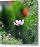 The Warmth Of Summer Metal Print