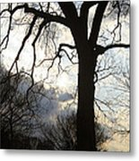 The Washington Monument Lost In The Trees Metal Print