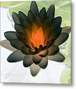 The Water Lilies Collection - Photopower 1035 Metal Print