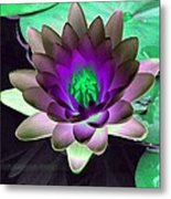 The Water Lilies Collection - Photopower 1114 Metal Print