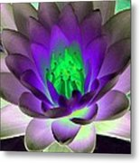 The Water Lilies Collection - Photopower 1115 Metal Print