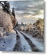 The Way Home Metal Print by Rory Sagner