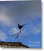 The Way The Wind Blows Metal Print