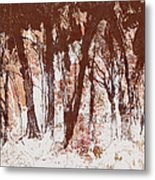 The Way Through The Woods 2 Metal Print