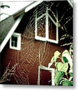 The Web Metal Print