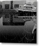 The Web Metal Print by Peter Skelton