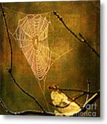 The Web We Weave Metal Print by Darren Fisher