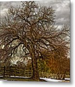 The Welcome Tree Metal Print