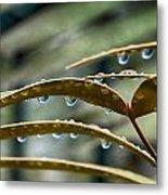 The Wet Of The Rain V2 Metal Print
