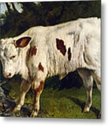 The White Calf Metal Print by Gustave  Courbet