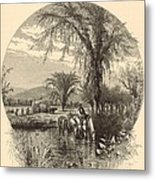 The White Mountains From The Conway Meadows 1872 Engraving Metal Print