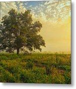 The White Oak Tree Metal Print