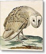 The White Owl Metal Print