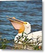 The White Pelican Metal Print
