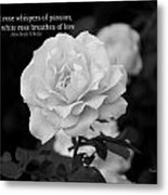 The White Rose Breathes Of Love Metal Print