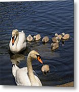 The Whole Family Metal Print