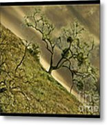 The Wicked Tree Metal Print