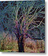 10994 The Widow Tree Metal Print
