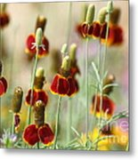 The Wildest Of Flowers Metal Print