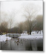The Willows In Winter - Newtown Square Pa Metal Print