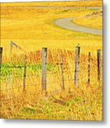 The Winding Road The Crooked Fence And The Bluebird Metal Print