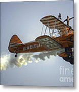 The Wing Walker  Metal Print