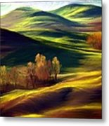 The Winter Is Over Metal Print