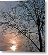 The Winter Skies Metal Print by Rhonda Humphreys