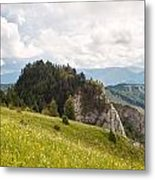 The Wooded Tor Metal Print